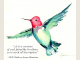 Anna's Hummingbird with quote