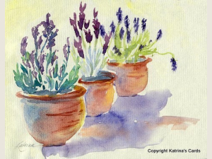 Lavender in Terracotta Notecard Gift Set