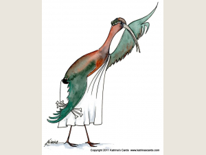 Beware the Ibis of March Note Card Gift Set