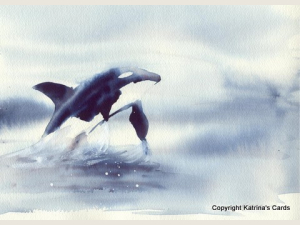 Kiri's Orca Note Card Gift Package