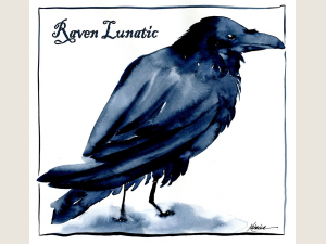 Raven Lunatic Note Card Gift Set