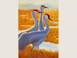 Sandhill Trio II Note Card Gift Set
