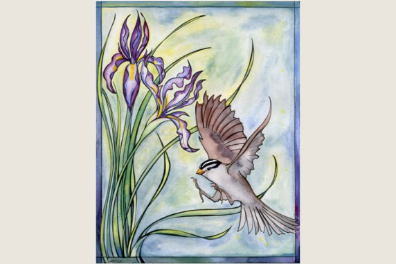 Wild Iris and Sparrow Note Card