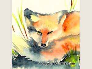 Red Fox Watercolor detail
