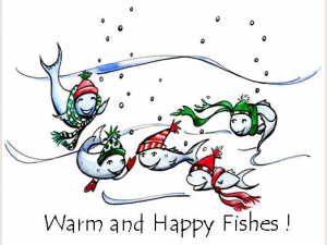 Warm and Happy Fishes Christmas Cards