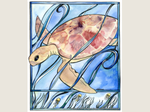 Sea Turtle  note  card Gift Set