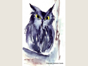 Screech Owl Notecards Gift Package 5 cards and envelopes