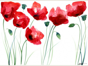 A Spalsh of Poppies note card set