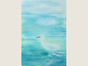 A white, long necked bird against the intense aqua color of the water