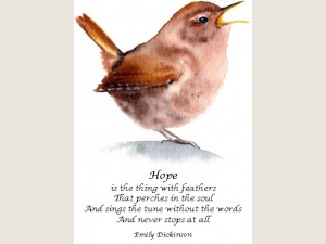 watercolor of singing Pacific Wren with upturned tail