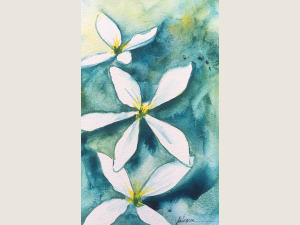 watercolor of white blossoms on textured green and blue background