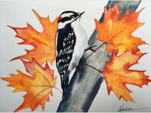 Wather color painting:  golden orange maple leaves with downey woodpecker