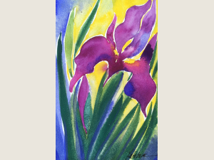 watercolor of purple iris blossom, buds and leaves with yellow behind